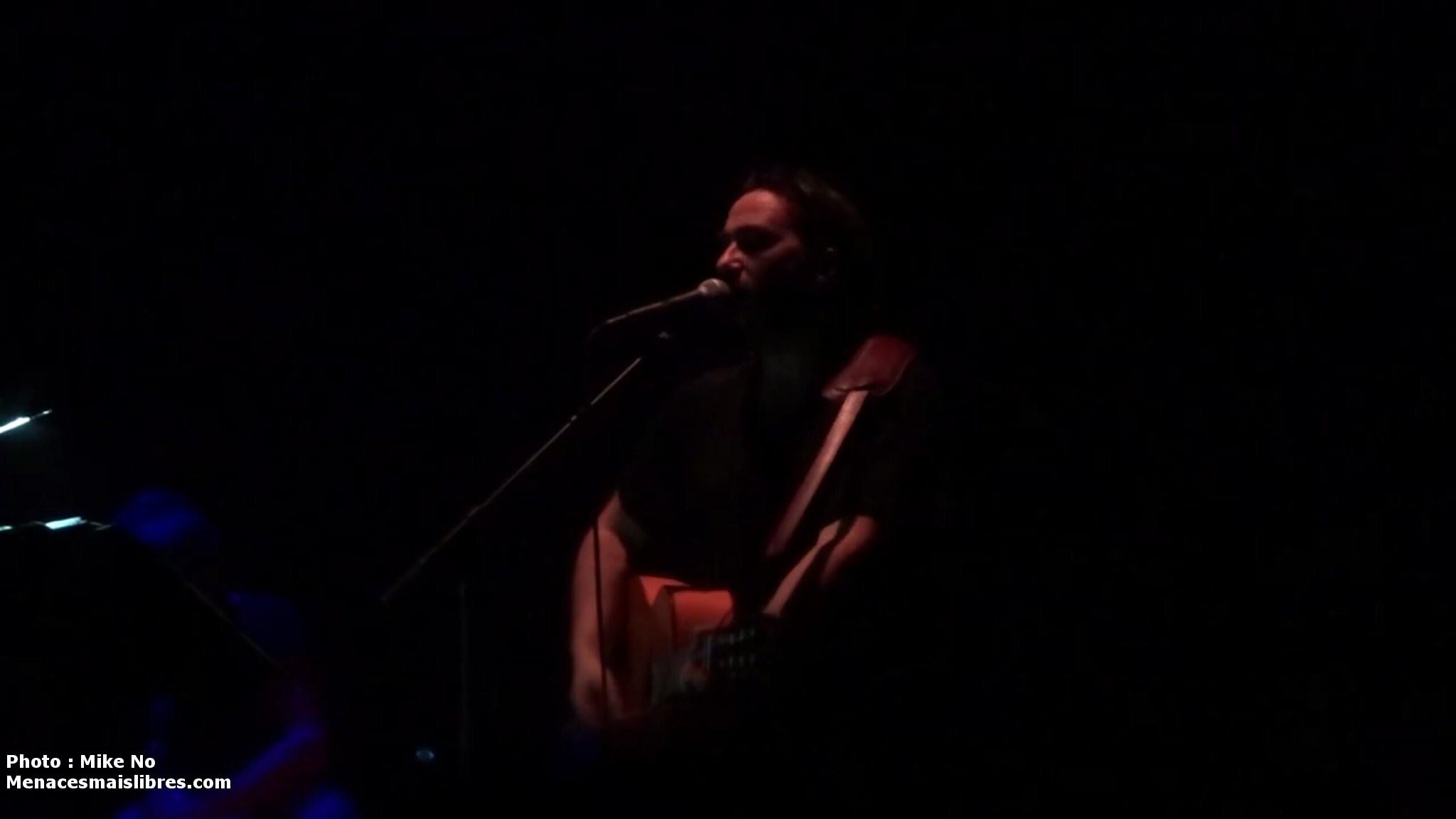 concert Strasbourg 2017 damien Saez photo